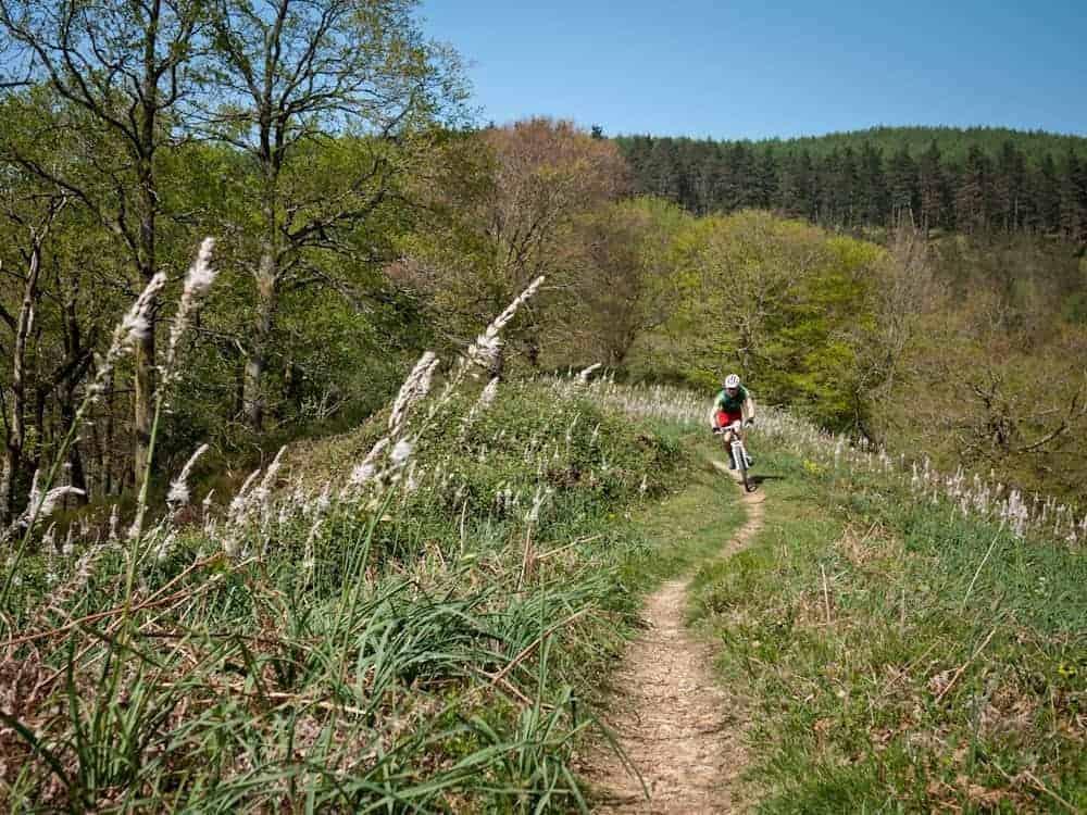 spanish-spring-basque-country-biking-holidays-24